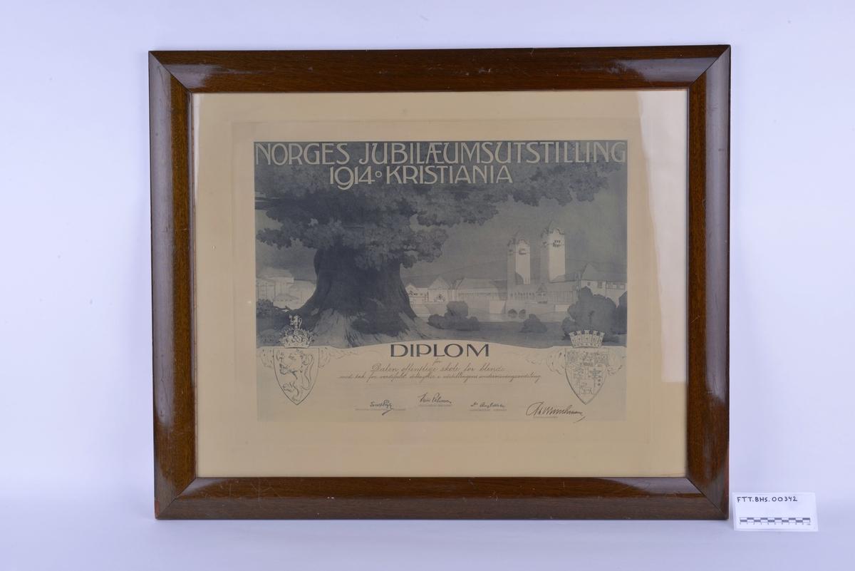 Rektangulær innrammet diplom, i glass og ramme. Diplomet er en plakat med motiv av utstillingsområdet på Frogner i 1914. Diplomet er påført riksvåpen, trykt og håndskrevet tekst. Rammen er av lakkert tre. På baksiden av rammen er det festet kroker av metall og en metalltråd, for oppheng.