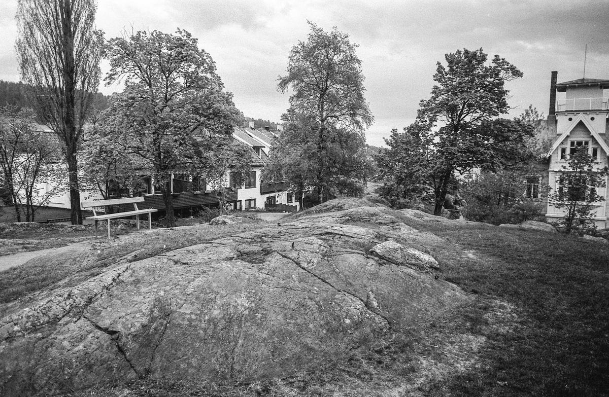 Badeparken i Drøbak, denne delen av parken er tenkt benytttet til akvarium. Bygningen Tento i bakgrunne og litt av Biologen.