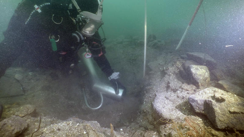 Dykker graver i sjøbunn med vannejektor. Vannejektoren i bildet ser ut som røret på en støvsuger som suger inn sedimenter fra sjøbunnen. I bakgrunnen ses stikkstenger og målebånd stikkende opp av hullet som graves. (Foto/Photo)