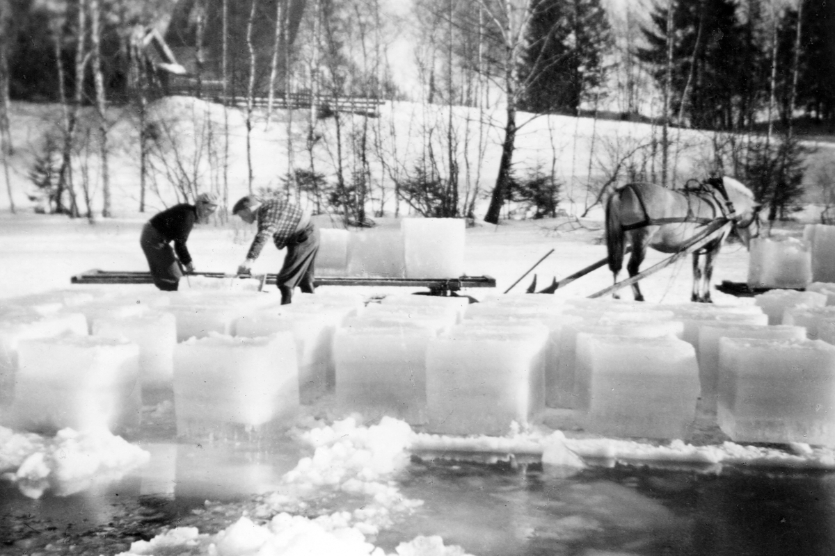 Is-saging - antakelig på Glomma,februar/mars.