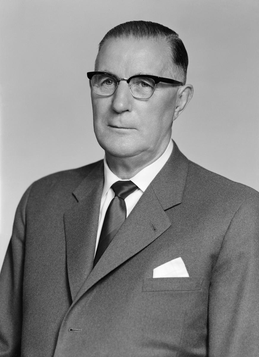 Porträtt av Wallentin Nydahl. Han lystrade även till de ståndsmässiga mellannamnen Timoteus Filippus. I övrigt godsägare till Hassla Hovmansgård i Vallerstad.