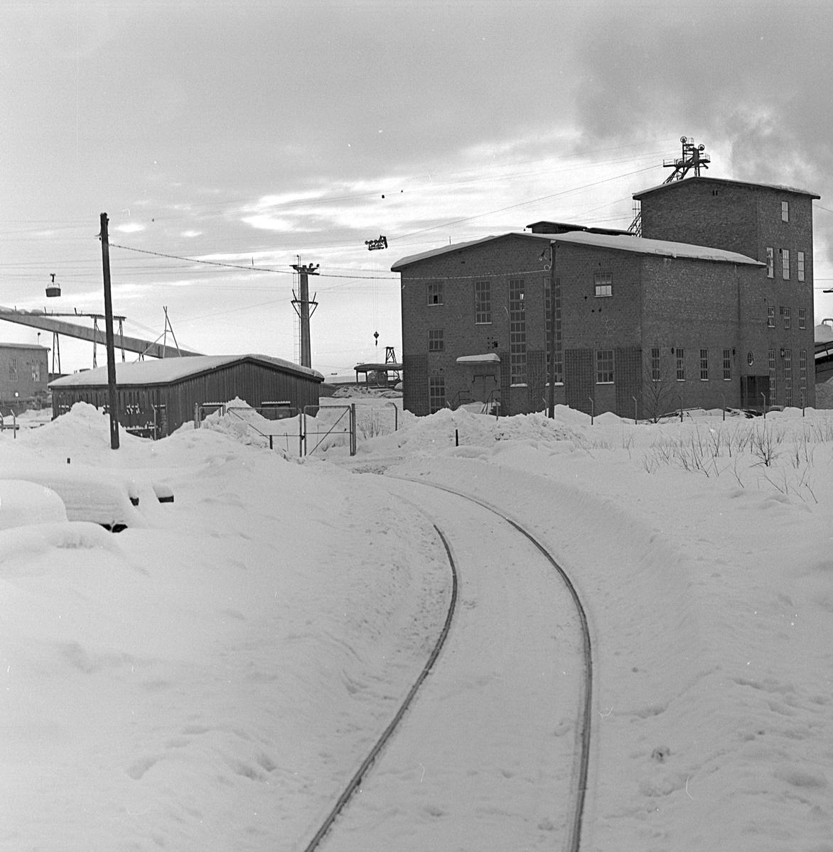 AB Statens Skogsindustrier, ASSI, Piteå