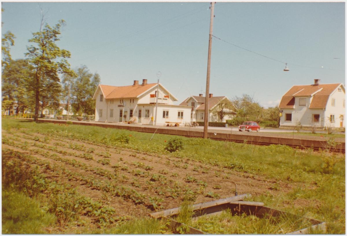 Doggerland p Stora Bryne at Stora Bryne vin & trdgrd