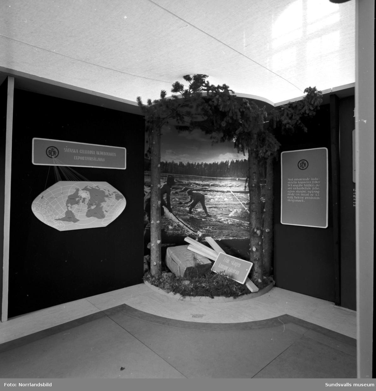 SCA har en utställning i och utanför GA-skolans gymnastiksal. Information om företagets olika verksamheter samt demonstration av olika moment från jobbet i skogen. Direktör Axel Enström syns på flera av bilderna.