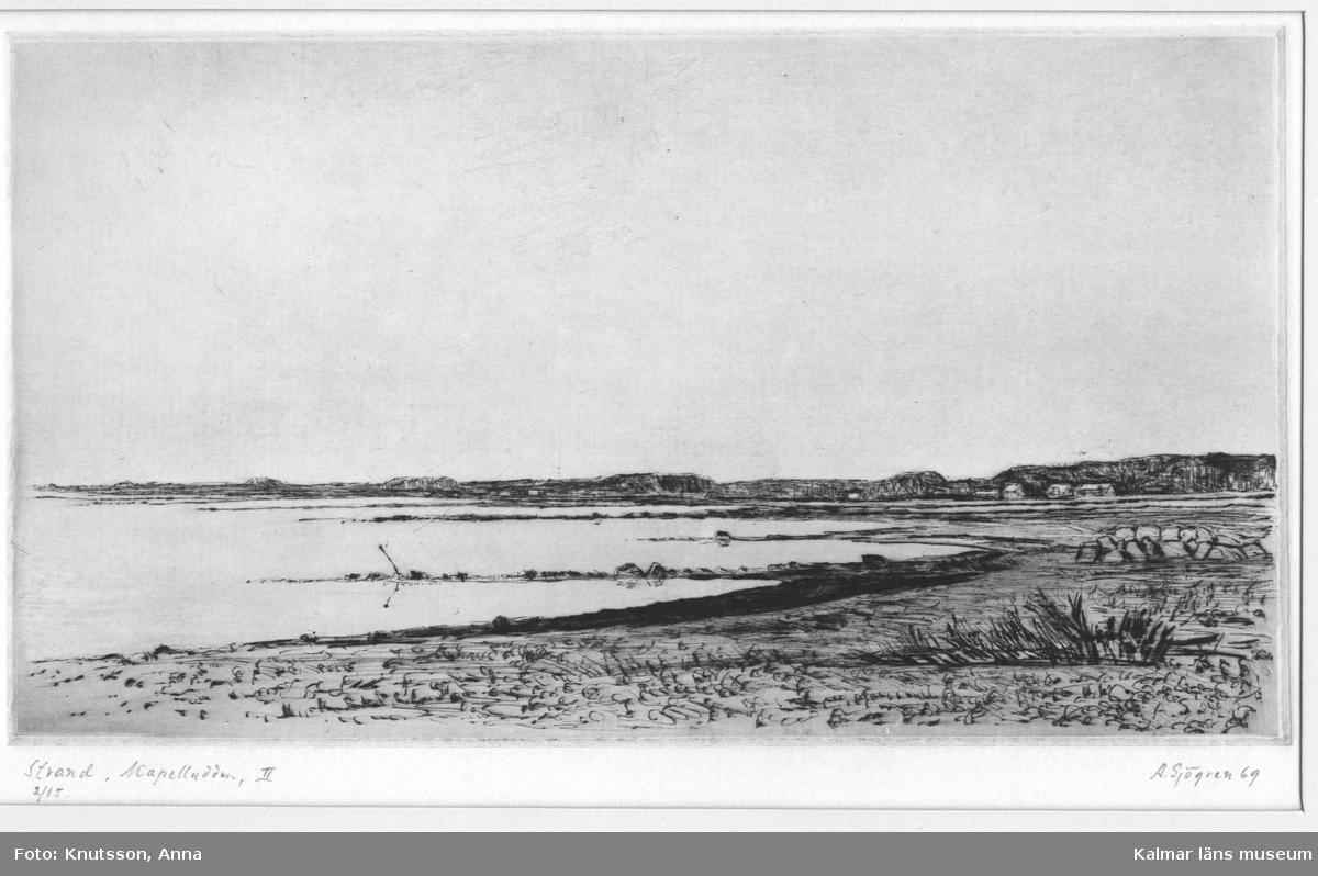 Strand och hav, samt med några hus i bakgrunden, vid Kapelludden, Öland.