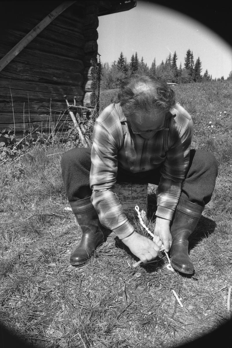 Anton Gråberget demonstrerer laging av vidjespenning 16/6-73