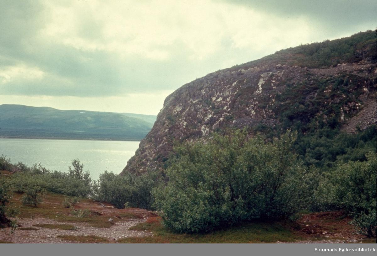 """Kunes, sommeren 1964. Veien til Leirbukt. Kunes (samisk: Gussanjárga) er en bygd i Lebesby kommune i Finnmark. Stedet ligger innerst i Storfjorden. Fylkesvei 98 passerer igjennom Kunes. Fotografen, Richard Bergh, har også skrevet et hefte som heter: """"Når vi sitt' her og prate"""". Folk i Laksefjord forteller. Norsk Folkeminnelags skrifter nr. 122. H. Aschehoug & Co. (W. Nygaard). Oslo 1980. ISBN 82-03-10187-9"""