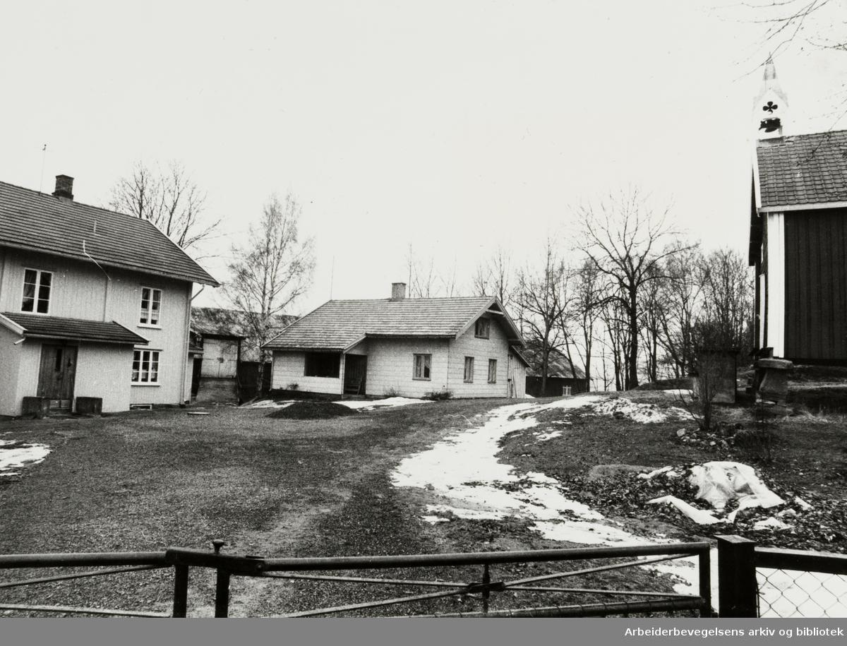 Furuset. Nedre Furuset gård. Januar 1979