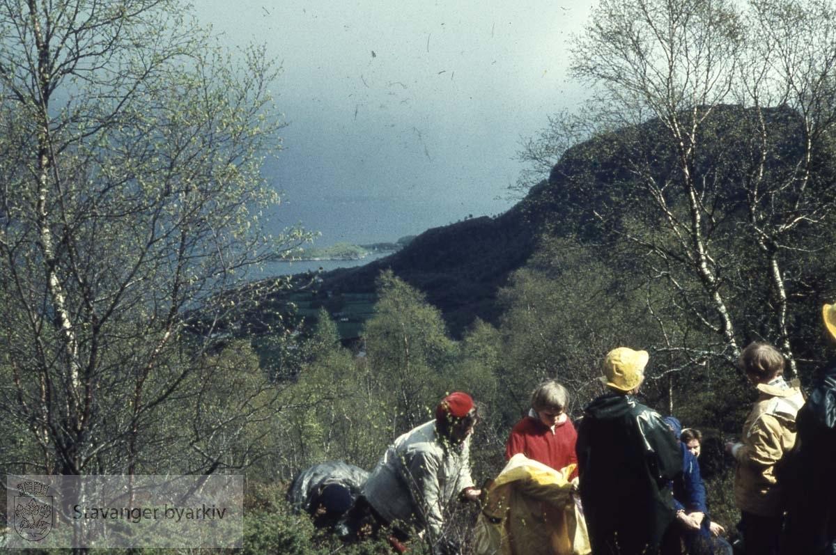 Turgåere i skog og mark