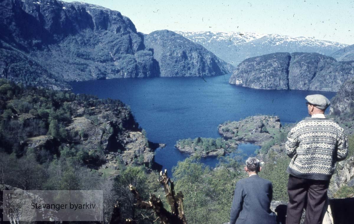 Turgåere med utsikt over vann eller fjord
