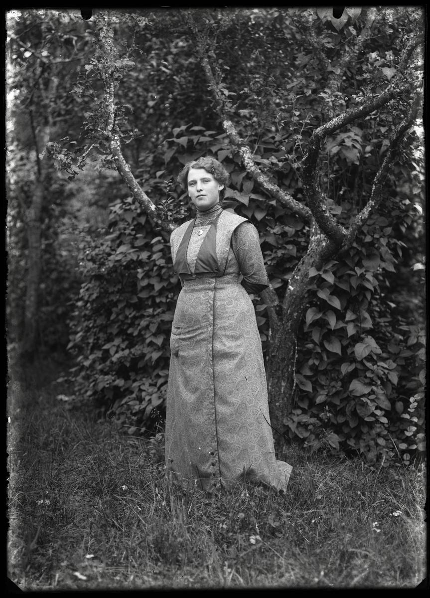 Mia Johansson, Höckgården