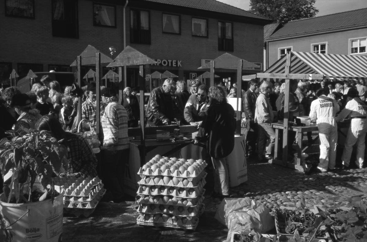 """Marknaden """"Bonde på stan"""" pågår på Järntorget. I torgståndet till vänster uppmanas besökaren att slå i spik med en hammare. Man kan visst köpa ägg också. Till höger står Lungers Barbeque och serverar lamm. Mycket folk i rörelse. I bakgrunden ses Apoteket."""