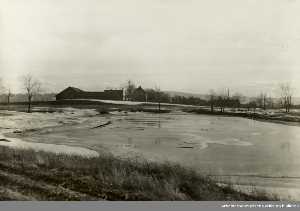 Hovin gård med isdammen. 1939.