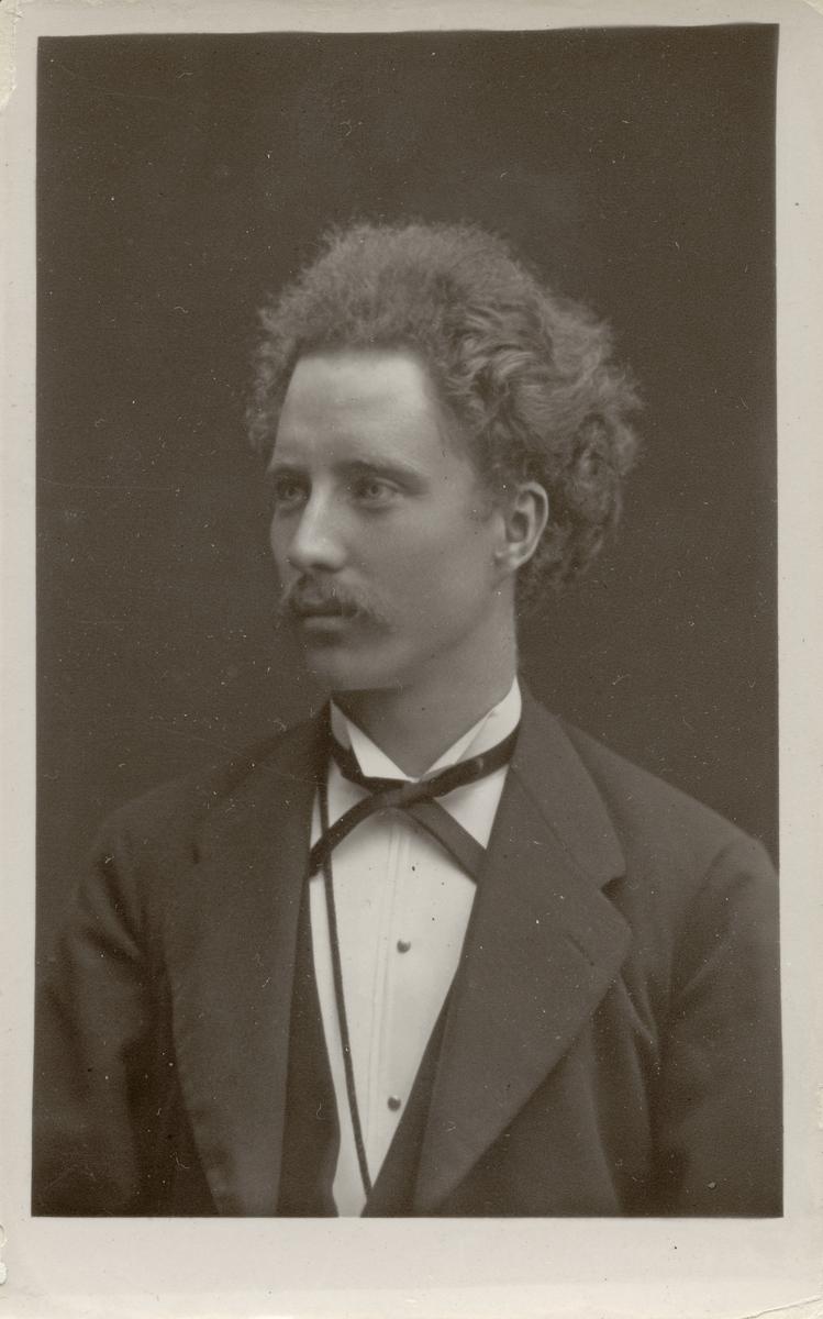 Robert Bäcklin, 1877.