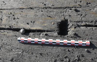 Foto viser en rund blykule, skutt inn i en planke.