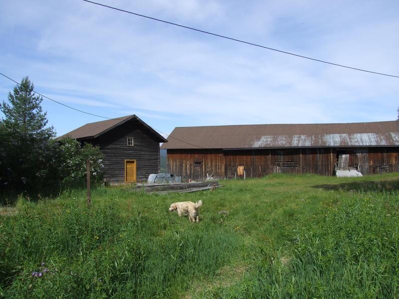 Nokre av husa på garden Bergsrud i Hedalen, 2007.