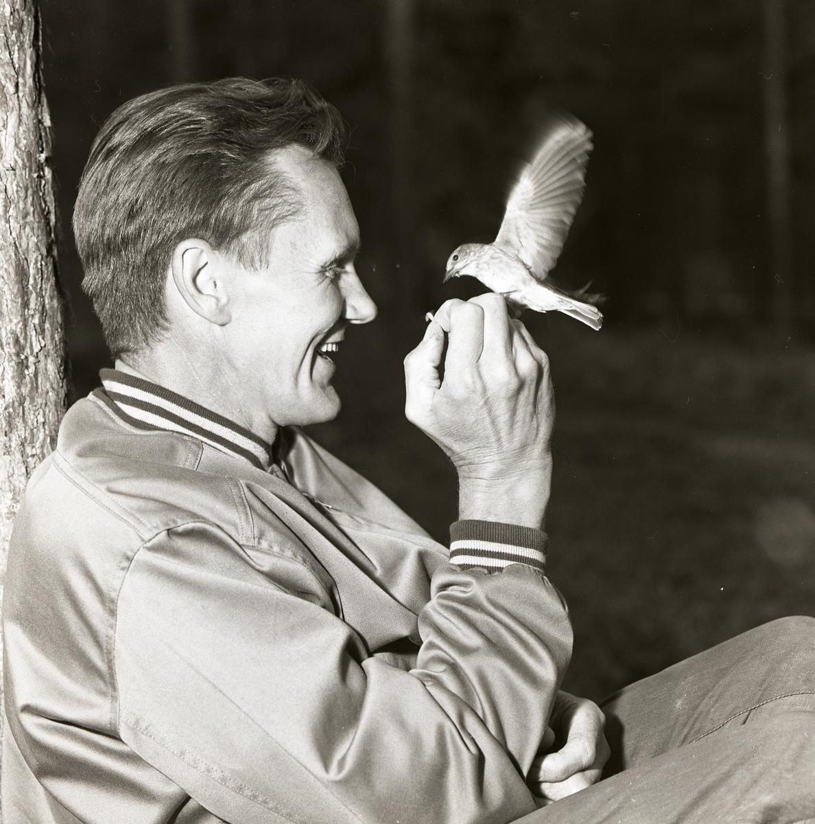 Hilding Mickelsson sitter vid ett träd och matar en fågel.