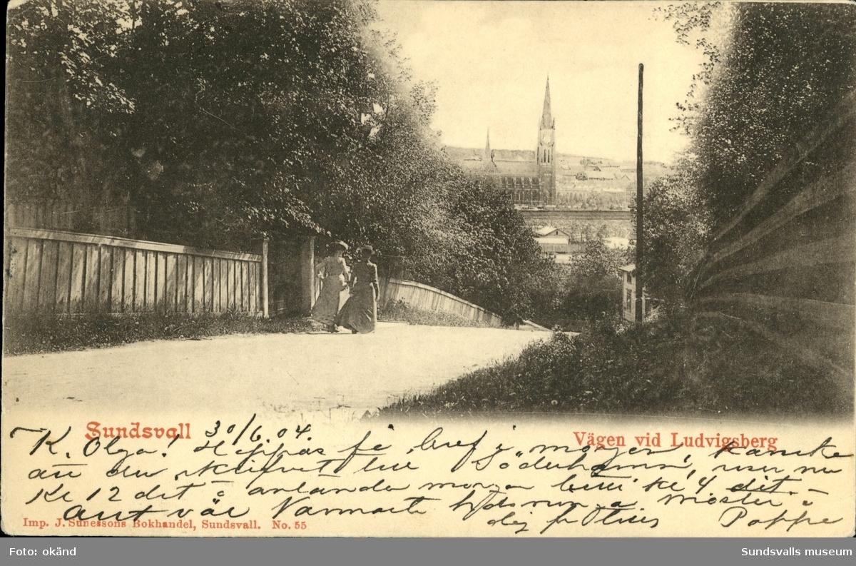 Vykort med motiv över Gustav Adolfs kyrka sedd från vägen vid Ludvigsberg i Sundsvall.