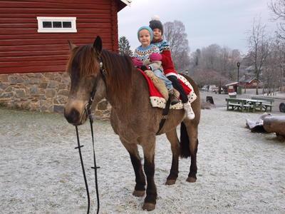 barn_pa_hest.JPG