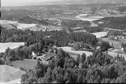Haug Knestang, Knestanggaten 1955