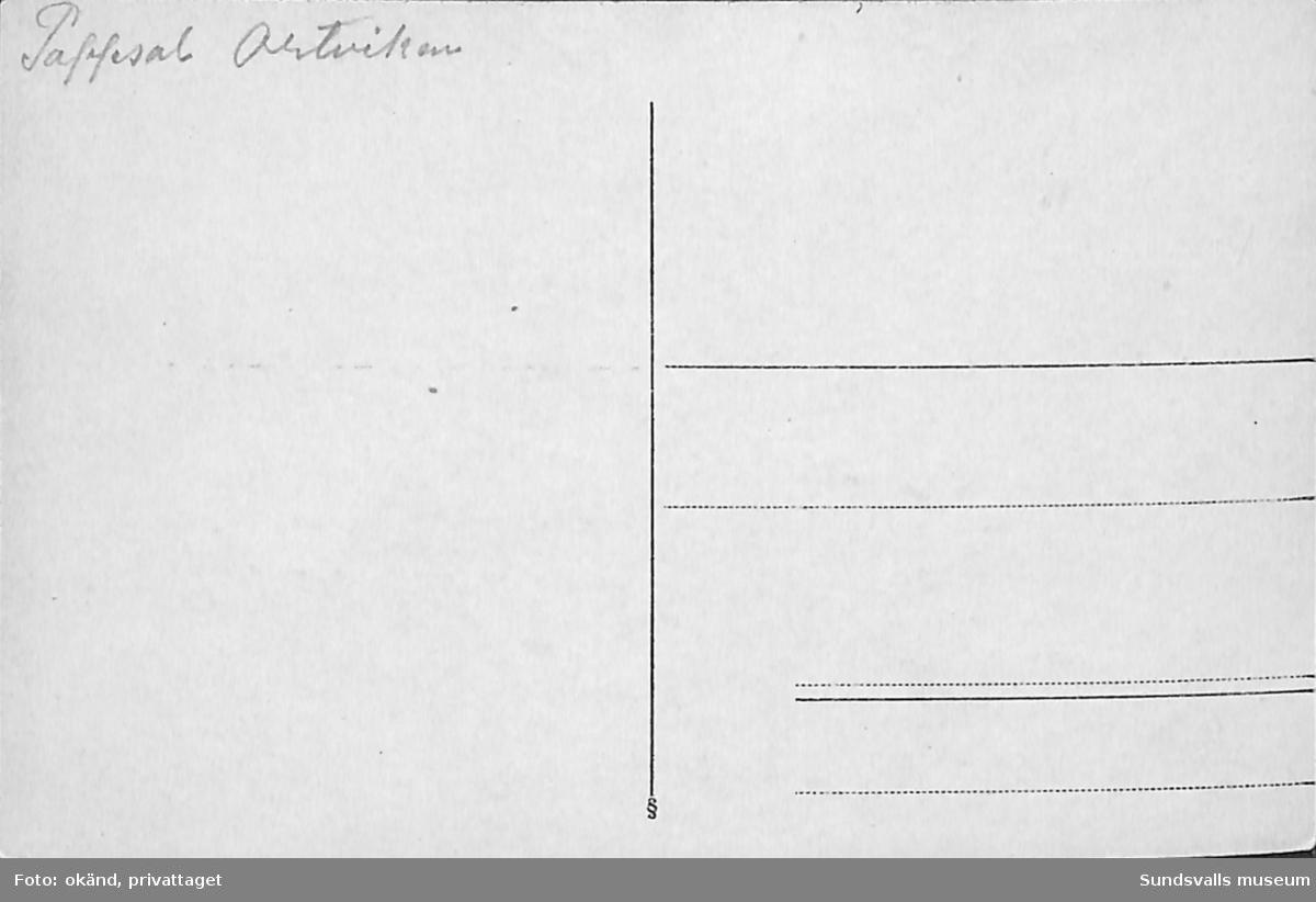 Vykort med motiv enl. text på baksidan över en pappsal på Ortviken.