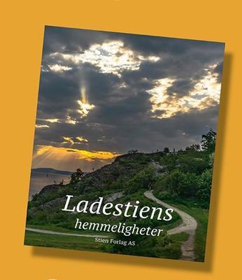 Boka_Ladestiens_hemmeligheter_web.jpg