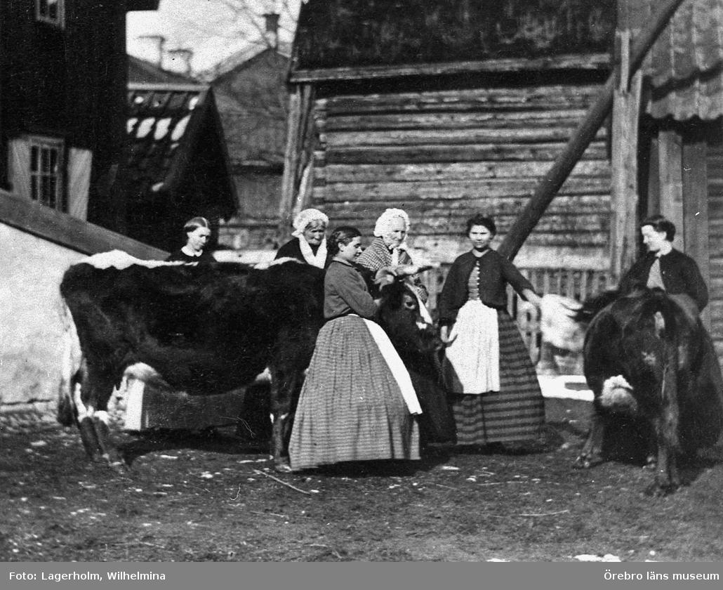 Örebro nr 54 söder (nuv. Drottninggatan 53), 1860-65, troligen Lagerholmska gården. Kon 'Nyckelpiga' omgiven av bl.a. Anna Elisabet Lagerholm, troligen Wilhelmina Lagerholm och hennes systrar Sofie (gift Ekholm) och Ingeborg (gift Bastholm).