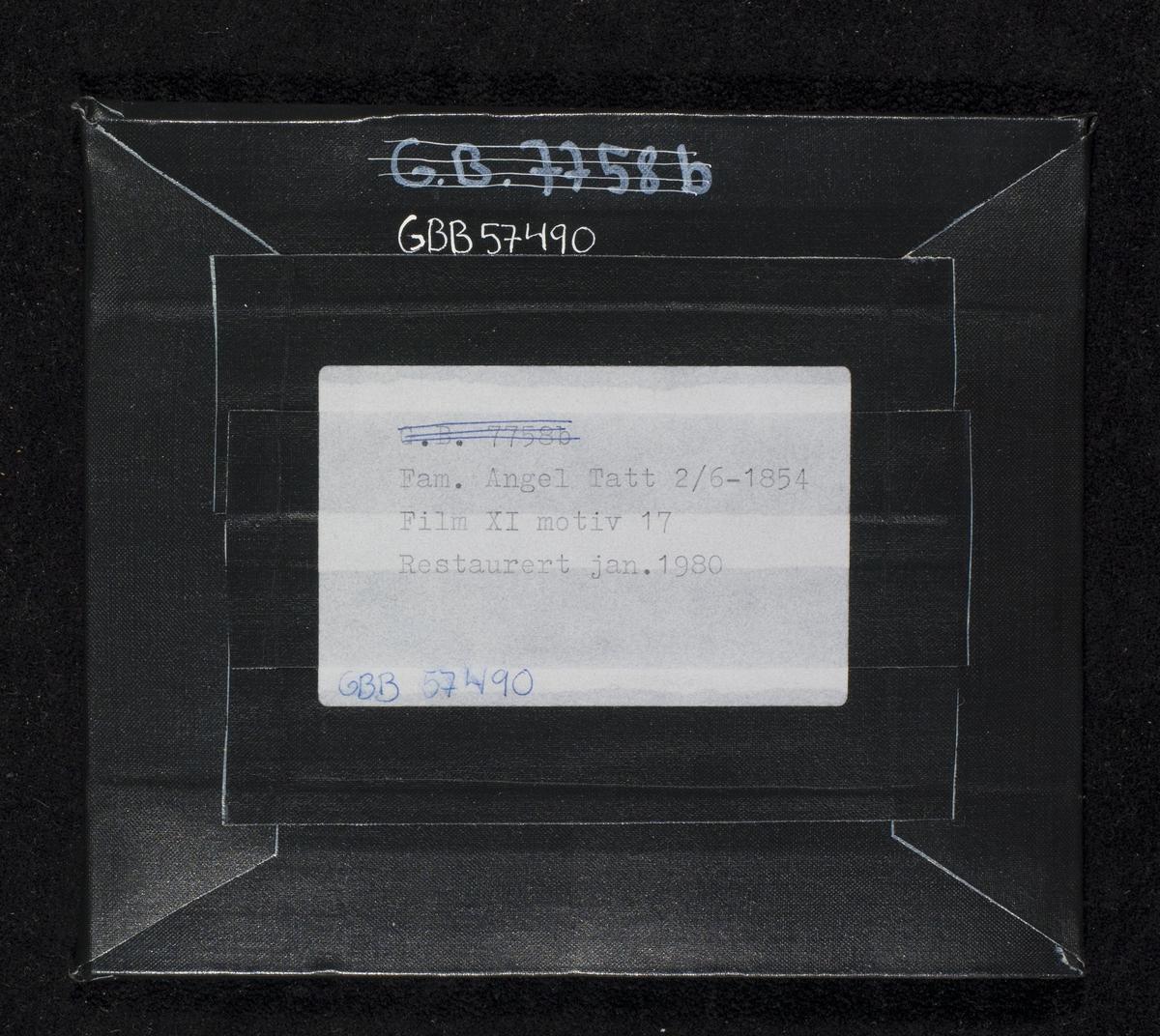 Daguerreotypi av familien Angell. Håndkolorerte hudtoner. F.v.: Artillerikaptein Cornelius Angell (1812-1874), Knut Andreas Angell (1845-1928), Mathilde Angell f. Wiel (1819-1857), Johannes Wiel Angell (1848-1982).  Alle daguerreotypier viser motivet speilvendt. Dette bildet er refotografert i to eksemplarer (se relaterte objekter under) som viser de avbildede i en versjon lik den virkelige verden. Altså har fotografen skapt to speilvendte bilder av et allerede speilvendt bilde.