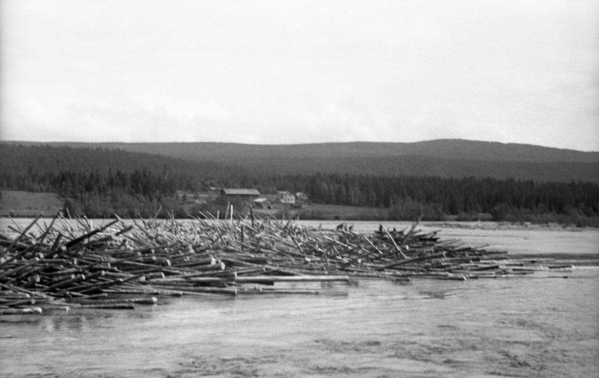 Tømmerhaug langs dammen ved Hommelnesset. Bildet er tatt for å bli en del av et sammensatt panoramabilde (se bilde 2).