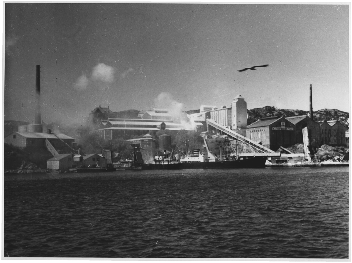 Akarsvik, i leden Bergen - Haugesund. Her stinker det - langt tilhavs
