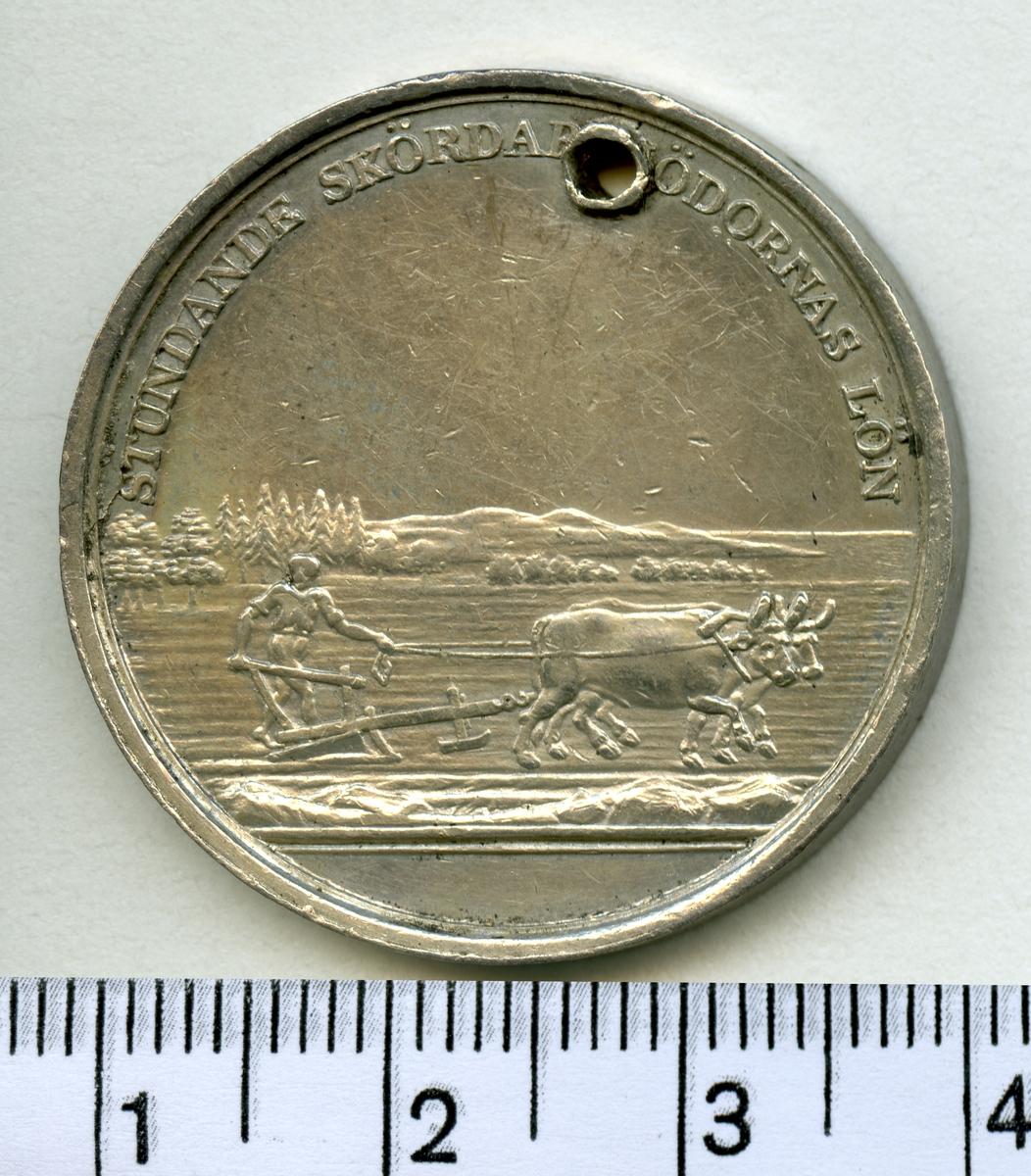 Belöningsmedalj.  Åtsida inskrift: CARL XIV JOH. SV. N. G. OCH V. KONUNG LANDTB. ACAD. BESKYDDARE  Frånsida inskrift: STUNDANDE SKÖRDAR MÖDORNAS LÖN  Gravör: L. P. Lundgren  Medaljen har ett hål.