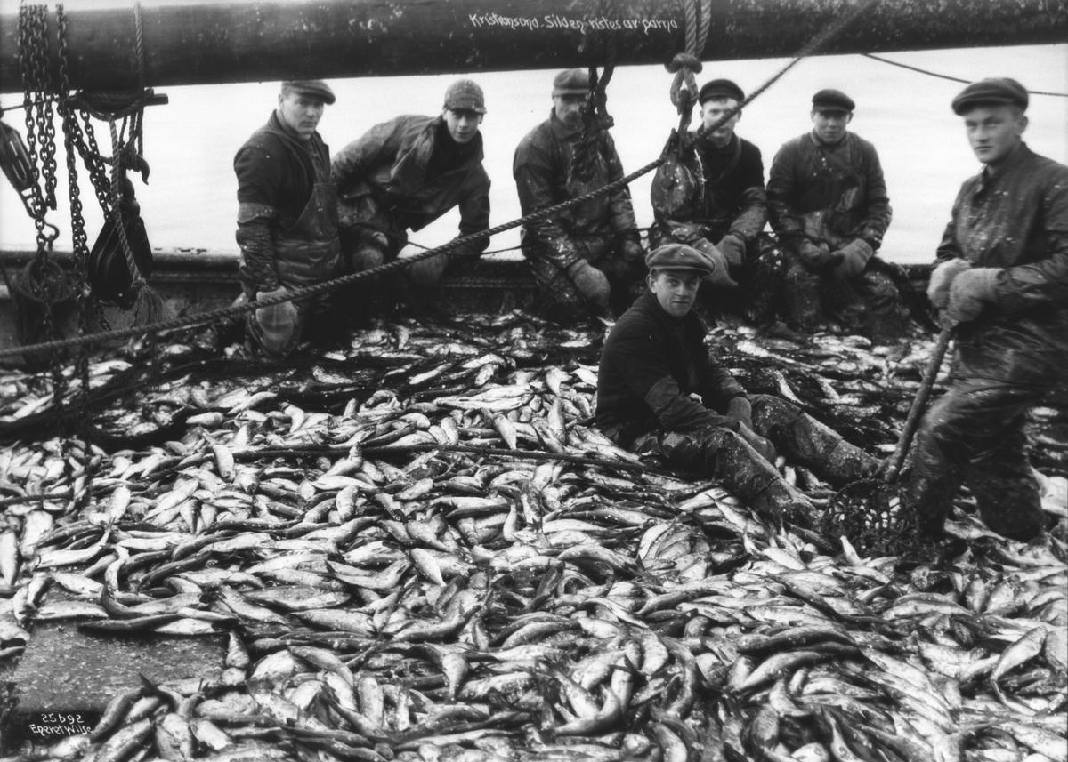 Prot: Kristiansund - Silden ristes av garna