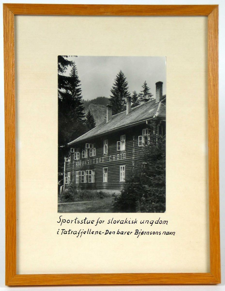 Stor tømmerbygning med sju vinduer i første og andre etasje. På taket fire høye skorsteinspiper. Landskap med grantrær.