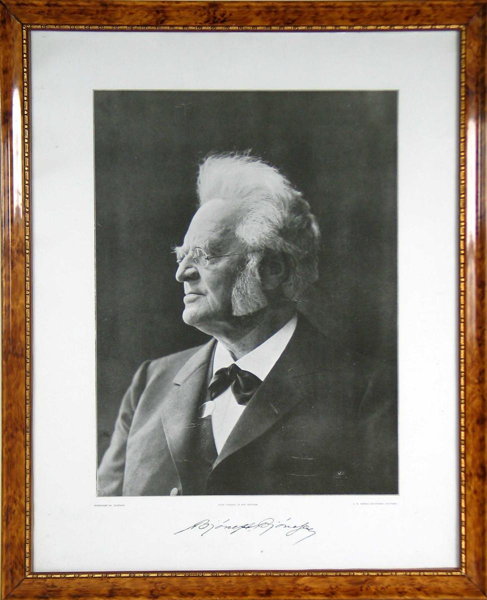 Portrett, profil.