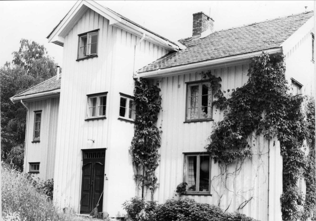 DOK:1980, Aulestad, drengestua, vildvin