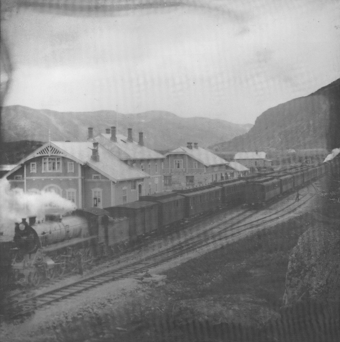 Transport, tog, Bergensbanen, Haugastøl stasjon eksteriør.