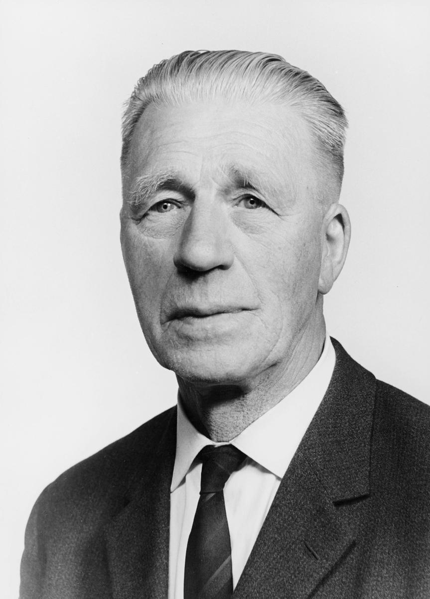 postmester, Tellefsen Bjarne Lie, portrett