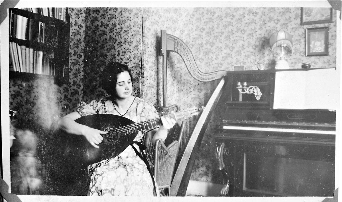 Kvinne, lutt, harpe, piano, interiør