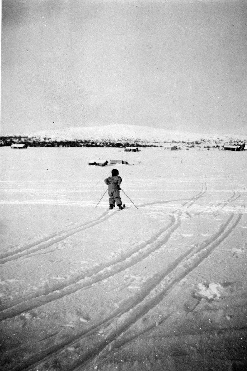 Vinter, fjell, barn, ski