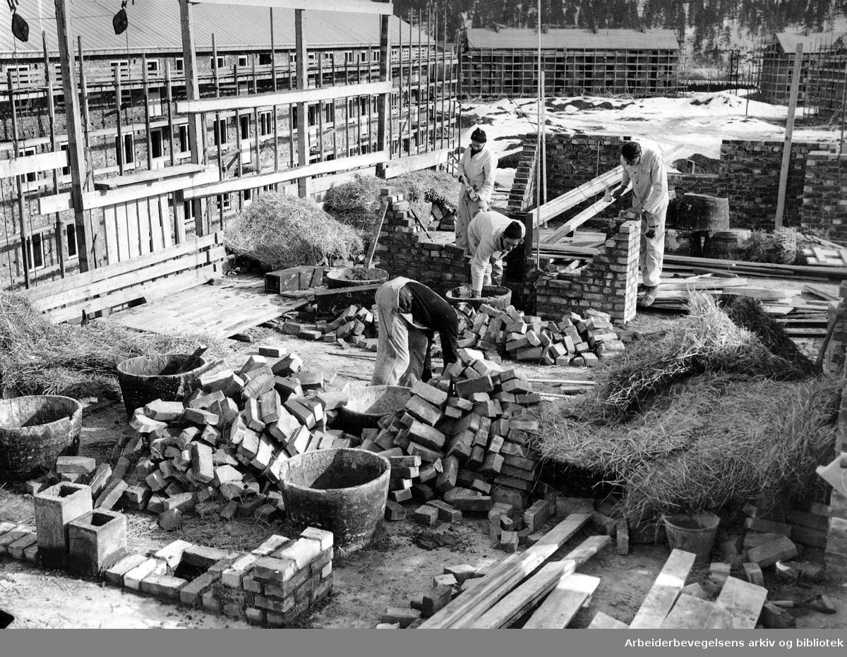 Boligbygging på Teisen,.mars 1950