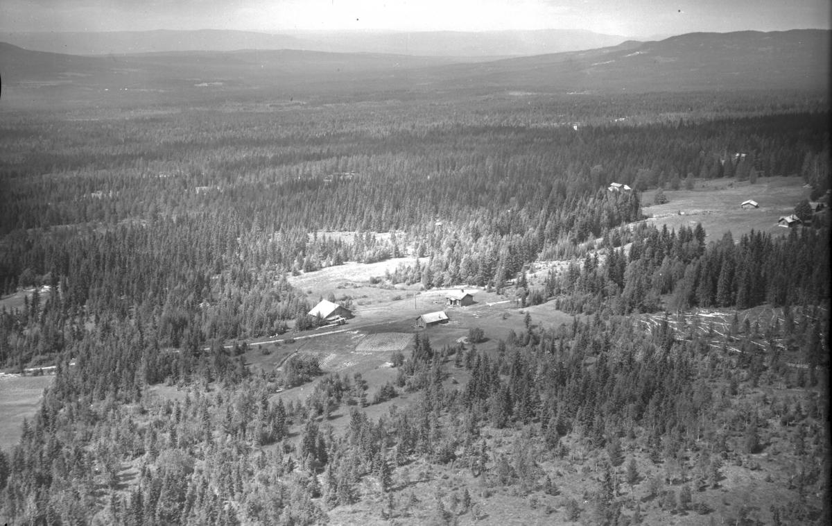 Løvhaugen søndre (Gnr 138/2) i Julussdalen. Løvhaugvegen 301