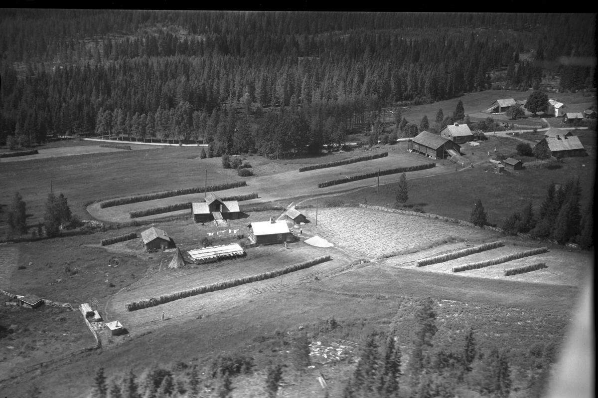 Løvli (Gnr 137/6) i Julussdalen. Løvhaugvegen 157. Skjærbæk østre (Gnr  137/1)  i øvre høyre bildekant.