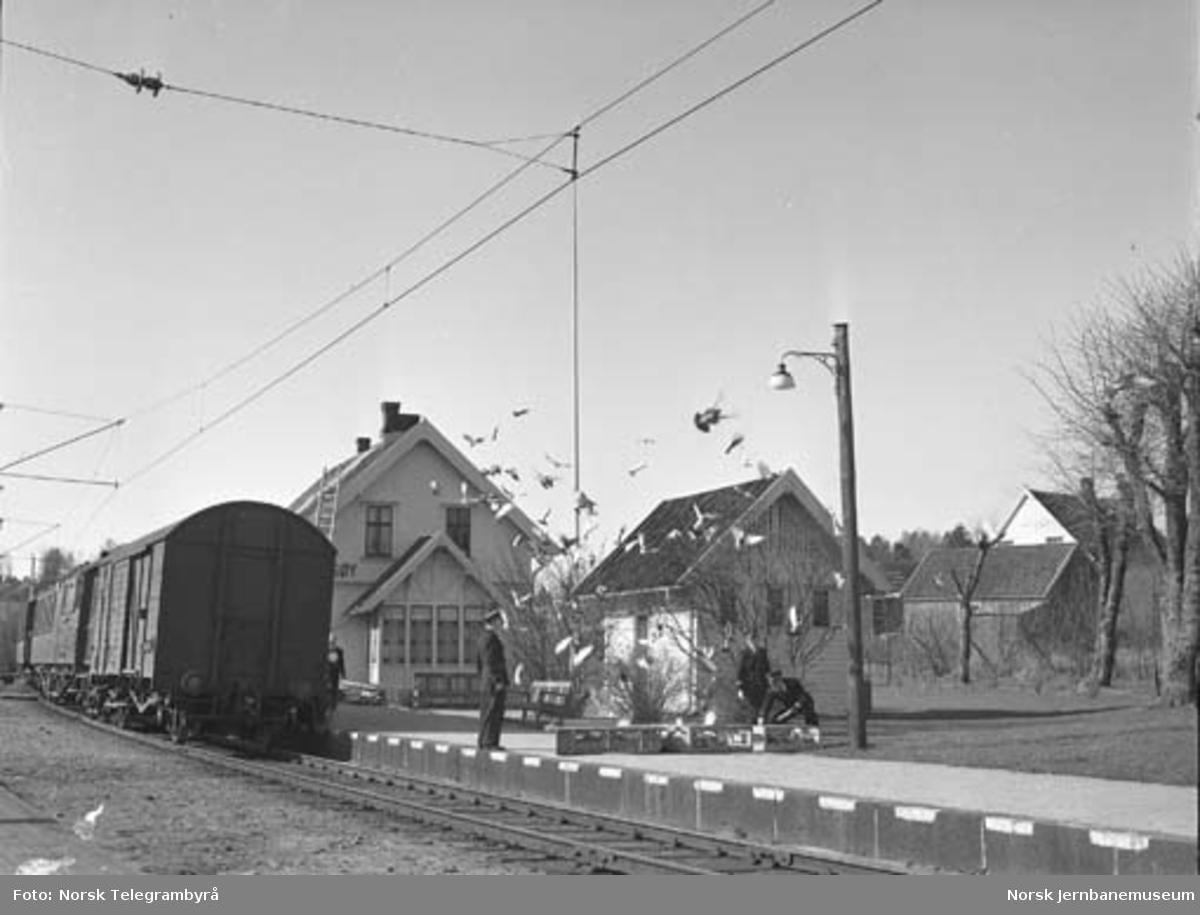Dueslipp på Onsøy stasjon