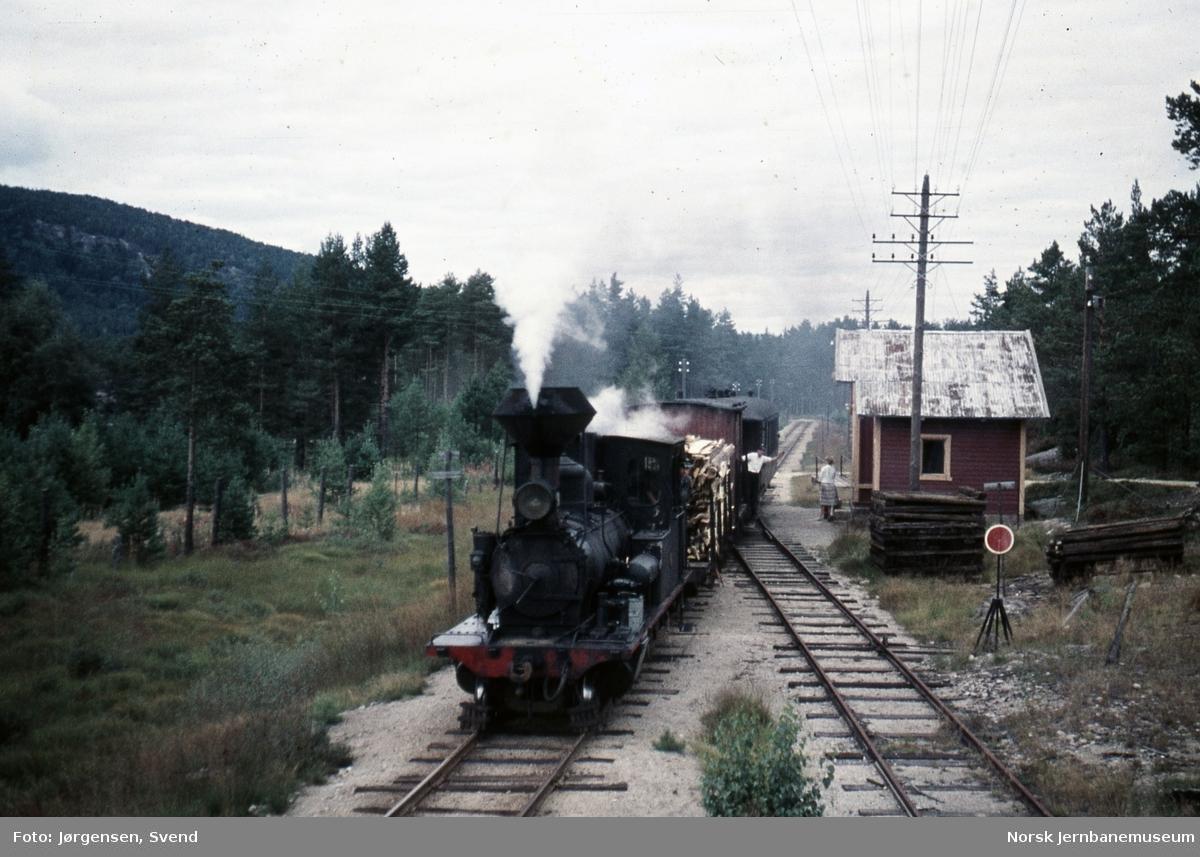 Damplokomotiv nr. 2 med godstog på Syrtveit holdeplass