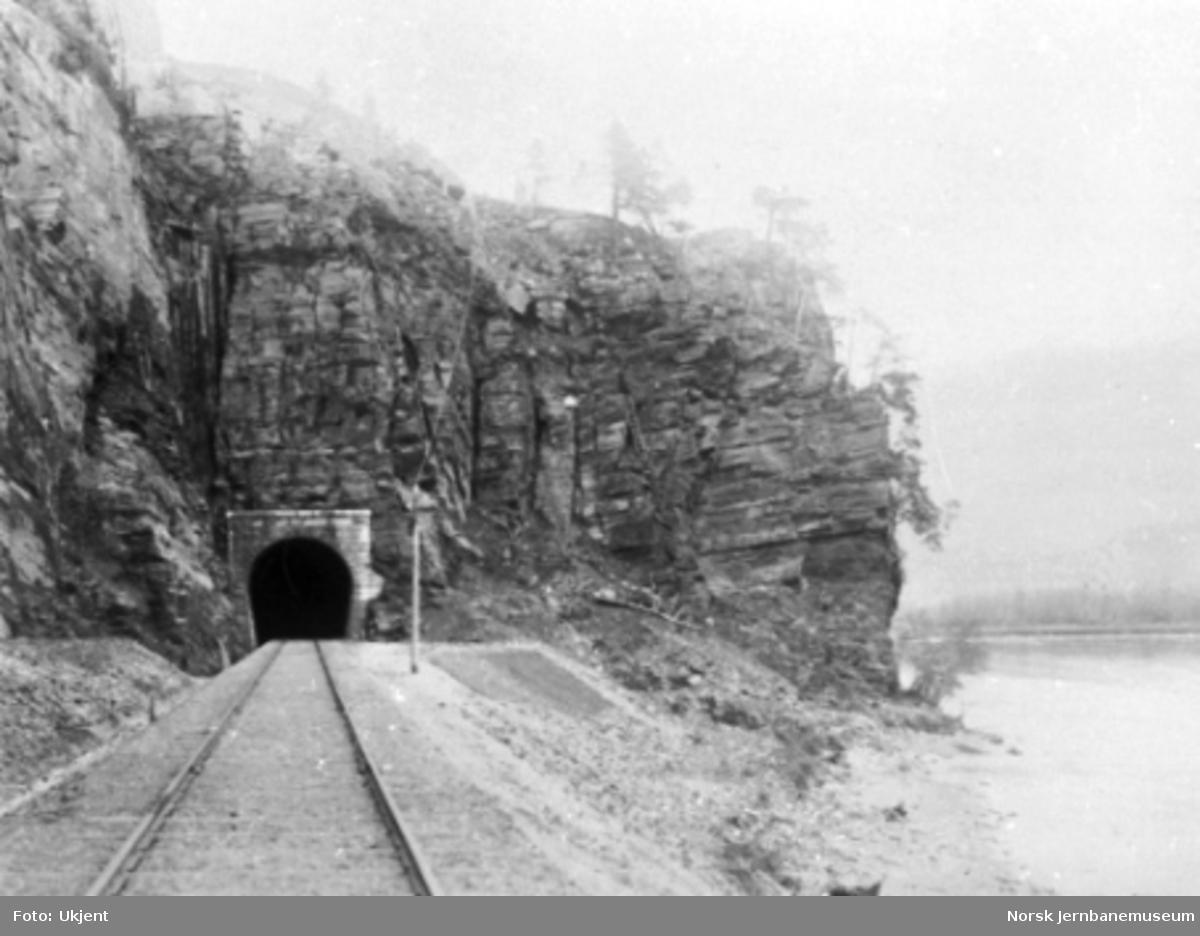 Randklev II tunnel sett fra sør