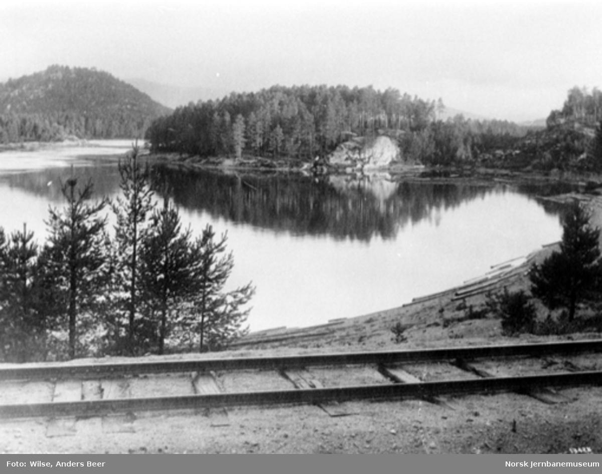 Parti fra Evje med sporet på Setesdalsbanen i forgrunnen. Bildet er tatt like sør for bro over Odåen ved km 67,9