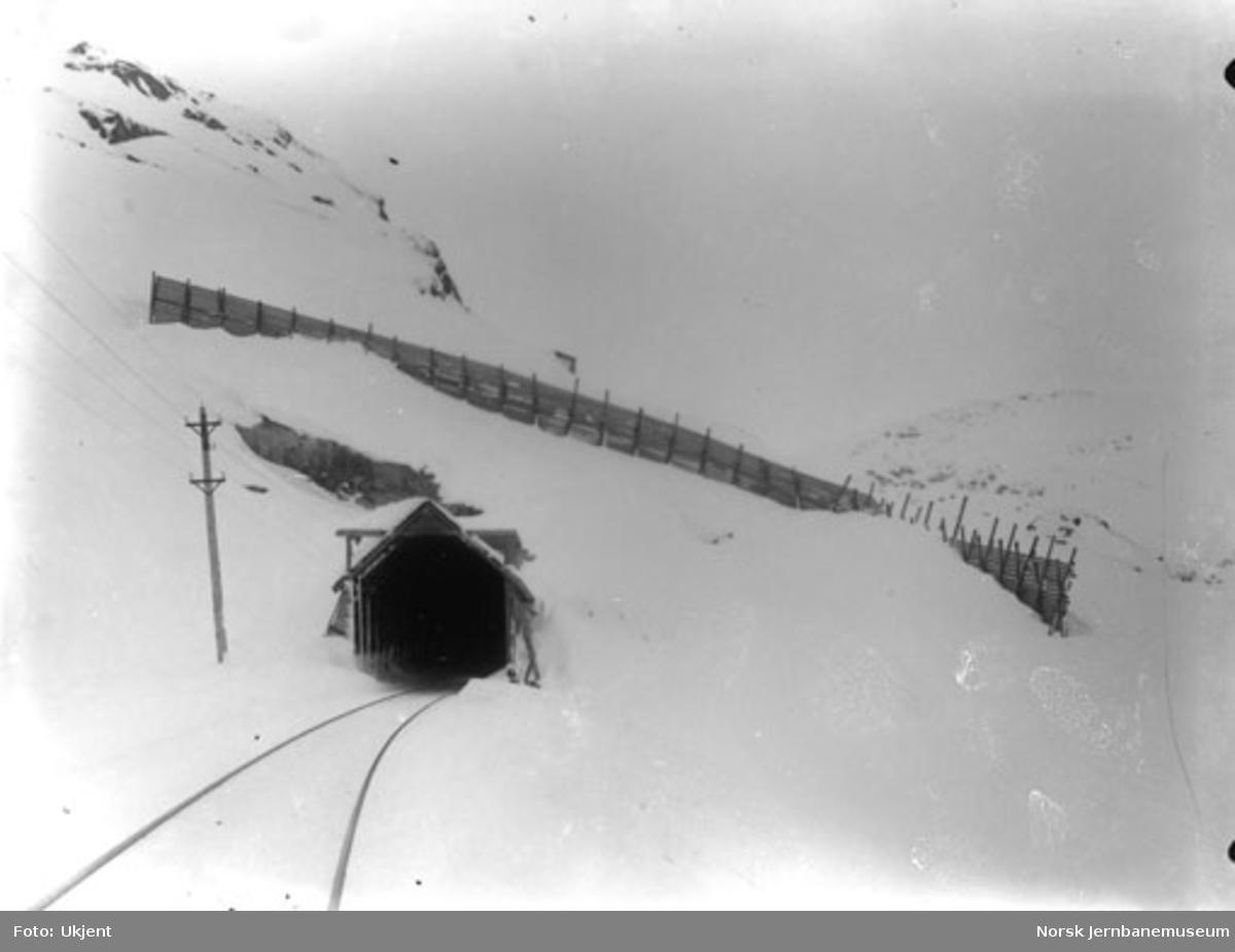 Linjeparti langs Bergensbanen (pel 6450) med snøskjermer og en overbygget tunnelinngang