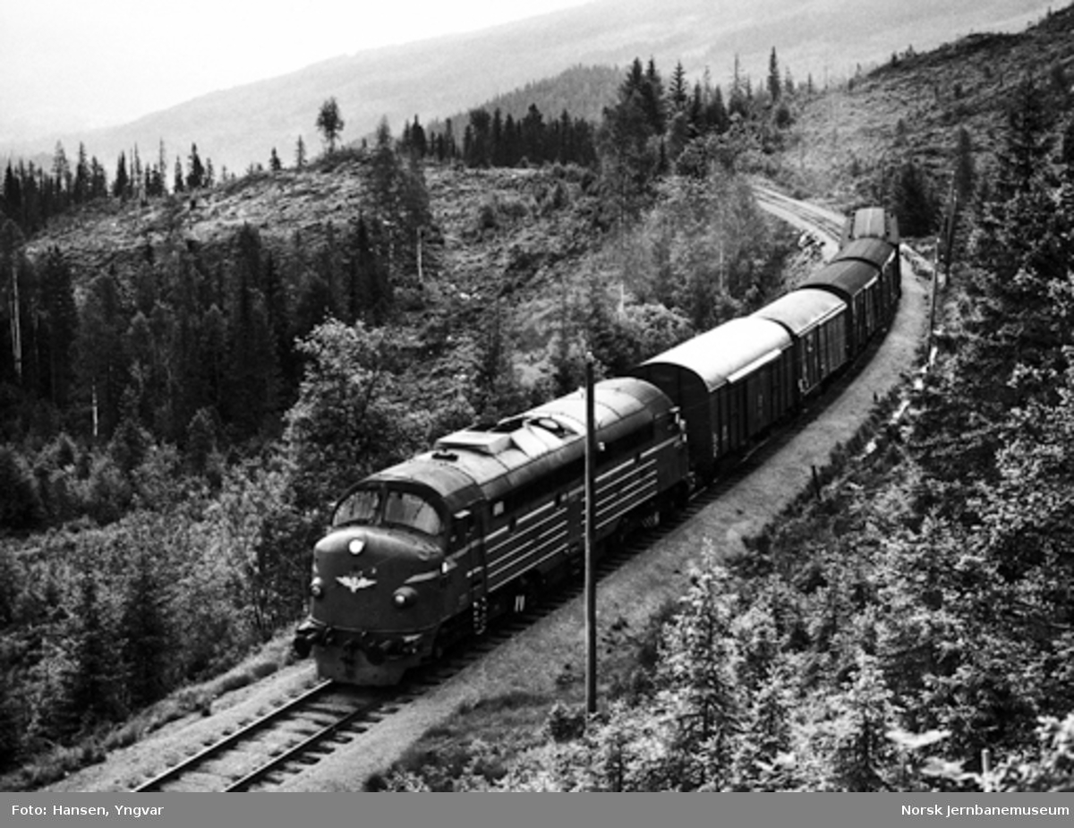 Godstog mellom Etna og Tonsåsen, trukket av diesellokomotiv Di3 629