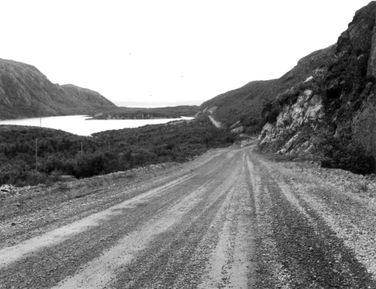 Gandvik sett nordover med veien i forgrunnen, 1968.