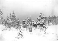 Vinterbilde fra Nedre Digerud, Frogn, Akershus, 1908, med vå